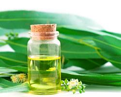 Eukalyptový aromatický olej